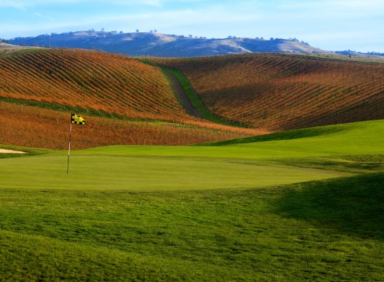 Pleasanton, CA: Golf course and surrounding vineyards