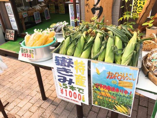 Nishimeya-mura, Japonia: photo0.jpg