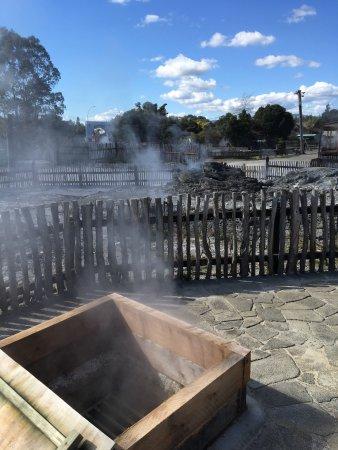 Maori Dorf: photo8.jpg