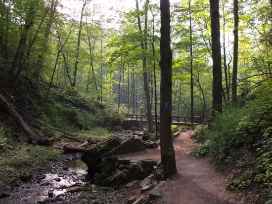 Ancaster, Kanada: Trail to falls