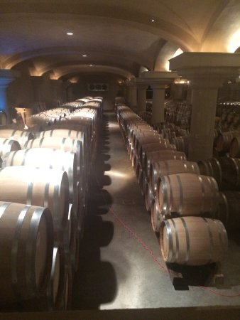 Healdsburg, CA: Barrel room is way more impressive than my photo shows.