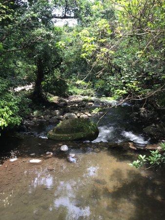 Rincon de La Vieja, คอสตาริกา: photo8.jpg