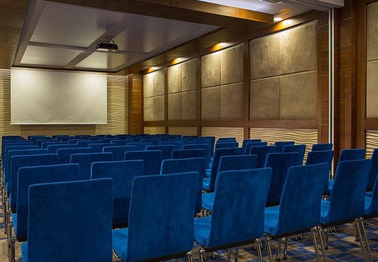 Renaissance Izmir Hotel: Efe Meeting Room - Theatre Setup