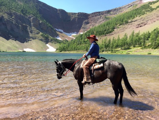 ‪The Trail Riders of the Canadian Rockies‬