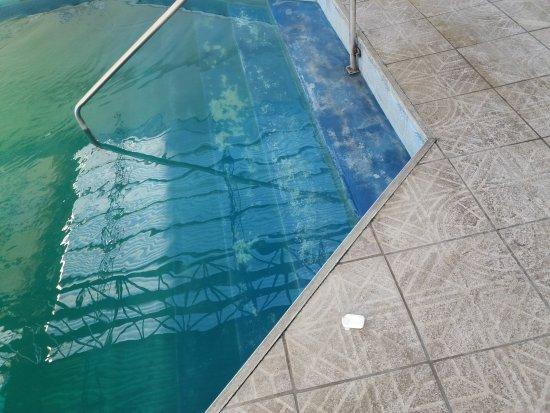 Hotel Playa Sere: 20170821_111632_large.jpg