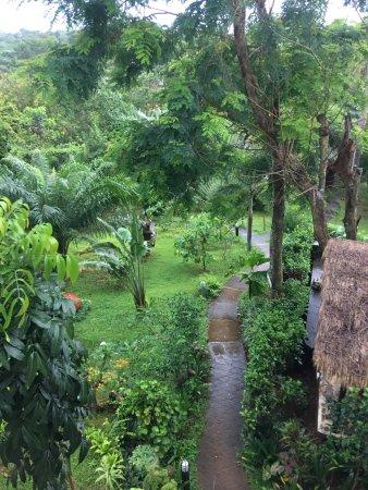 Ko Mak, Thailand: photo7.jpg