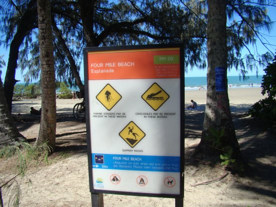 Palm Cove, Australia: DSC05567_large.jpg
