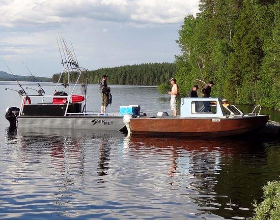 Lapland Wild Fish