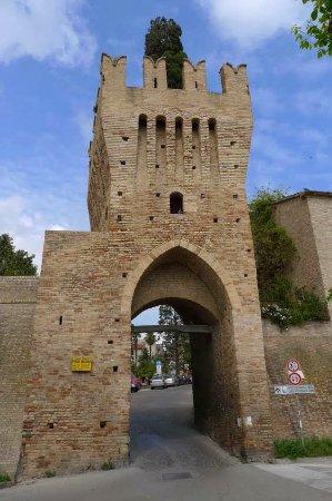 Civitanova Alta, Italia: Civitanova Marche Alta - Porta Marina con il caratteristico cipresso.