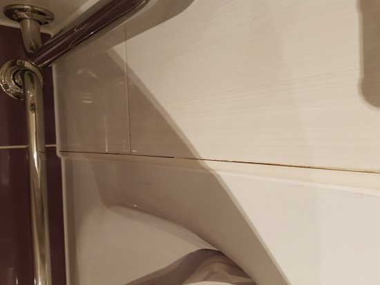 Premier Inn London Tower Bridge Hotel: Not the best bathroom and the rest was a bit run down.