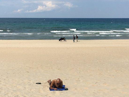 Kande Beach Resort: Beach