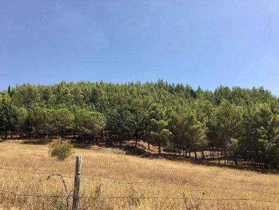 Parco Regionale del Taburno