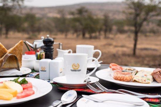 Landscape - Picture of Wellworth Ole Serai Luxury Camp Moru Kopjes, Serengeti National Park - Tripadvisor