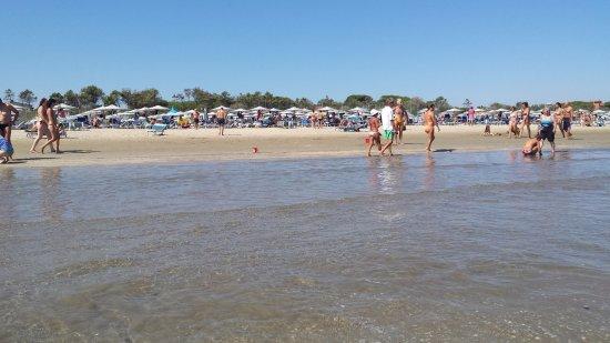 Spiaggia - Foto di Bagno Delfino 131, Pinarella - TripAdvisor