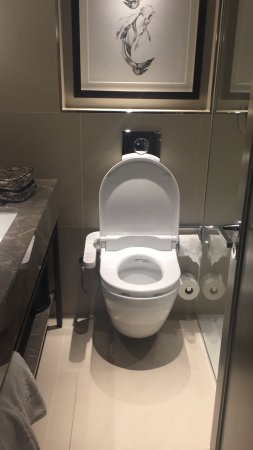 Hyatt Regency London - The Churchill: very small bathroom, but clean and great japanese