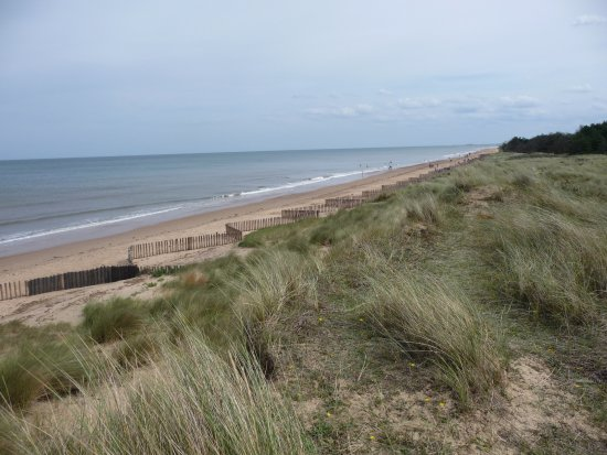 Holme Dunes National Nature Reserve