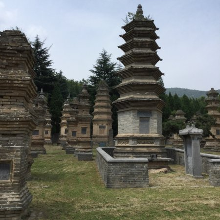 Pagoda Forest of Shaolin Temple: photo2.jpg