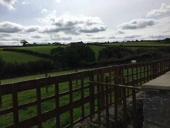 Llannefydd صورة فوتوغرافية