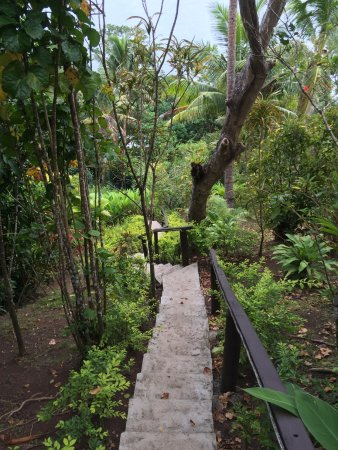 Naveria Heights Lodge: Beautifully kept gardens