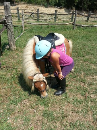 Cevoli di Lari, Italië: pony games dai 3 anni e mezzo