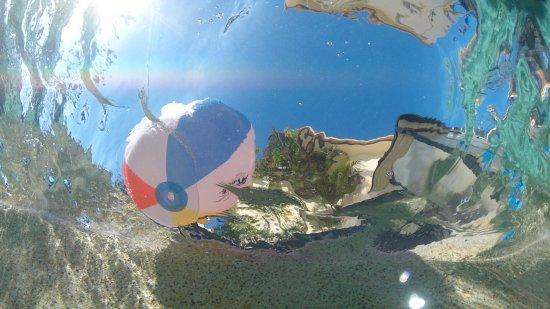 Rose Bay Resort: photo3.jpg