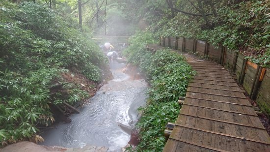 Oyunumagawa Natural Footbath