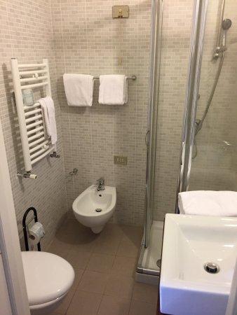 Hotel Ala Bianca: Newly renovated / Tiny shower
