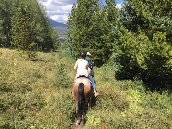 Silverthorne, CO: A wonderful ride with amazing views. I am a rider & the horses were perfect. I would highly reco