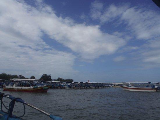 Turtle Island: De honderden bezoekers; file varen dus naar turtelisland