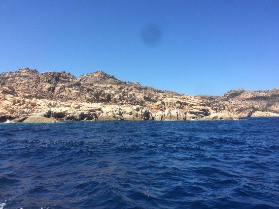 Proteus Diving: photo5.jpg