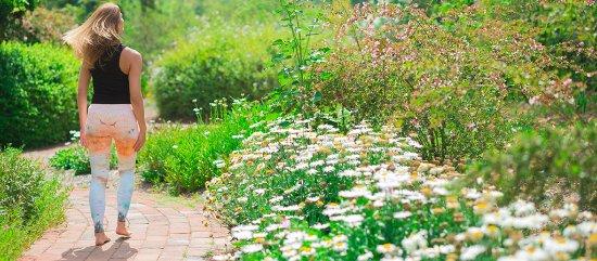 Rancho La Puerta Spa: Gardens Summer