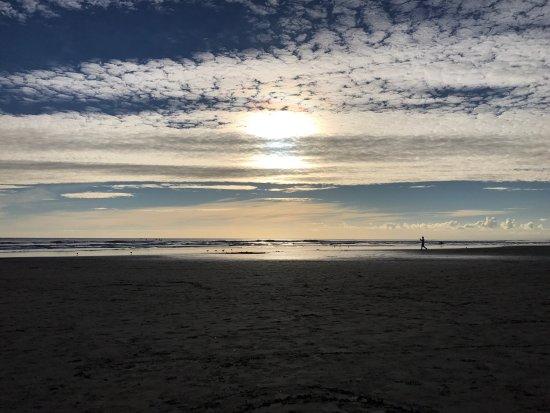 Muriwai Beach, Nouvelle-Zélande : photo5.jpg
