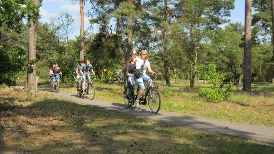 Veluwe Specialist Hoenderloo: Een heerlijke tandemtocht door de bossen en over de heide