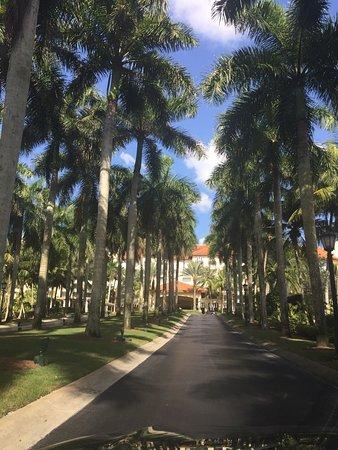 The Ritz-Carlton Golf Resort, Naples: photo2.jpg