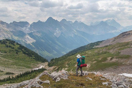 Nipika Mountain Resort: Backpacking near the Continental Divide