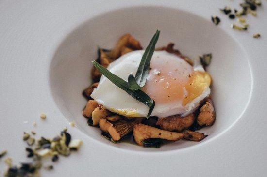 Murska Sobota, سلوفينيا: Fresh mushrooms baked in pumpkin oil with poached egg and pumpkin seeds.