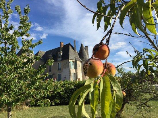 Chateau de La Celle Guenand: photo0.jpg