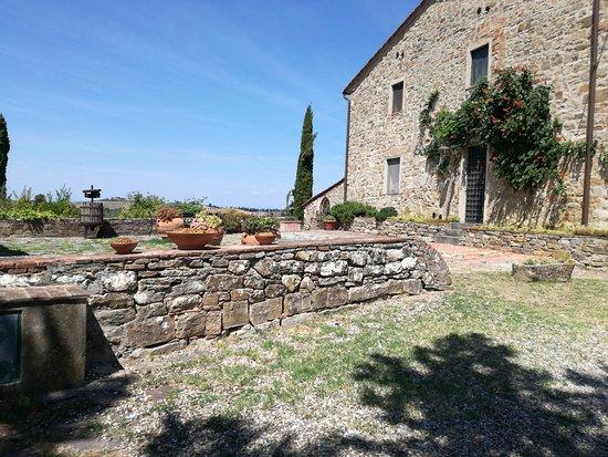 Torre di Ponzano - Chianti area - Tuscany -: IMG_20170817_124245499_large.jpg