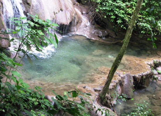 National Park of Palenque: Tropical park