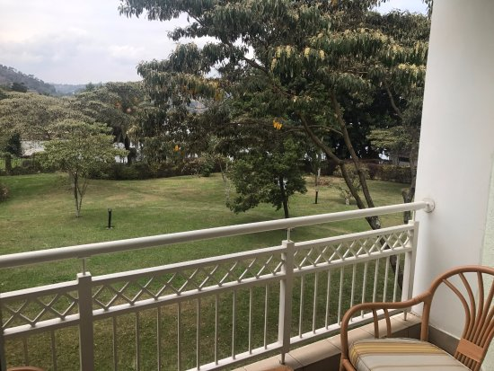 Lake Kivu Serena Hotel: Room 125, this is the view from the bedroom, no lake view, trampoline behind that tree