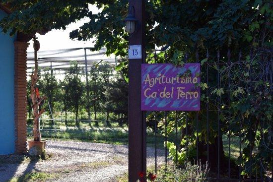 Agriturismo Ca del Ferro: Agriturismo met veel levendige kleuren begint aan de poort