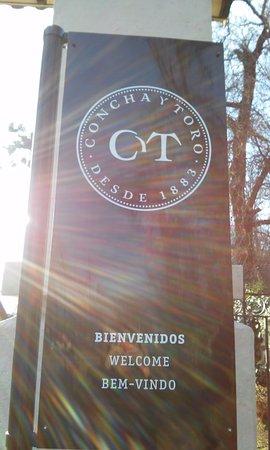 Pirque, ชิลี: Concha Y Toro