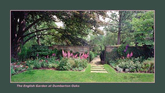 Spring is splendid in Dumbarton Oaks! - Picture of Dumbarton Oaks ...