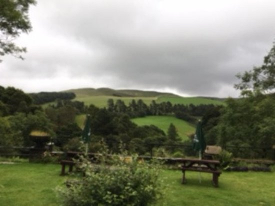 Ponterwyd, UK: view from the garden
