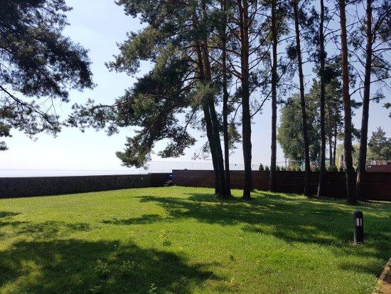Hlibivka Photo