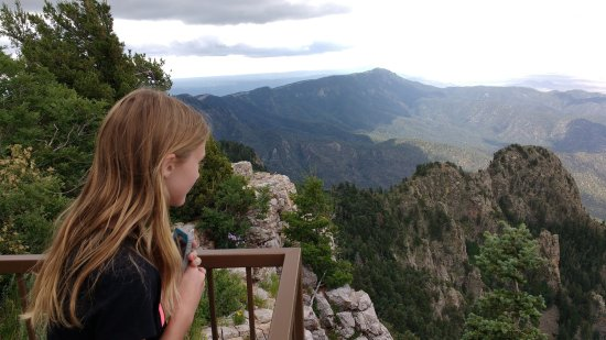 Sandia Peak Tramway: The view from the top.
