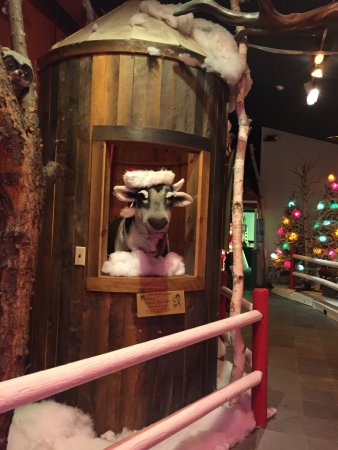 The Christmas Loft.A Reindeer To Greet You At The Christmas Loft Picture Of