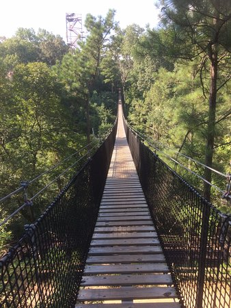 Whitesburg, Τζόρτζια: A suspension bridge