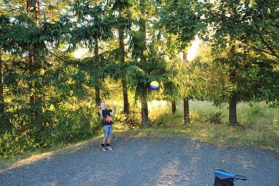 L l stub stewart state park campground buxton or for Stub stewart cabins