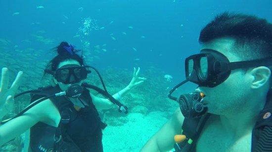 Deep Life Divers: MUSA y arrecifes manchones!